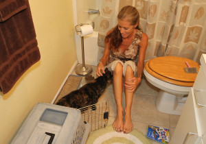 """Bonnie opens the cage in the bathroom for """"Chloe"""" to get used to her home with two other cats. """"Chloe"""" instantly cozied up to Bonnie and ventured throughout the home within minutes. Jillian Danielson/RiverScene"""
