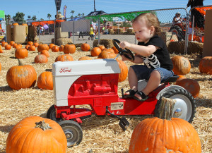 Spencer Gibson plays on a tractor at the Pumpkin Festival Saturday morning. Jillian Danielson/RiverScene