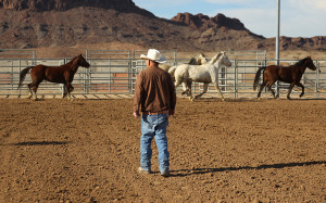 Bob looks after the horses as they run around the arena Friday morning. Jillian Danielson/RiverScene