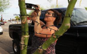 Jamie Streeter wraps purple lights around a tree on Main Street Thursday morning. Jillian Danielson/RiverScene