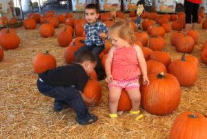 Jacobe and Elias Leon and Sydney Ramiez play with pumpkins Saturday. Jillian Danielson/RiverScene