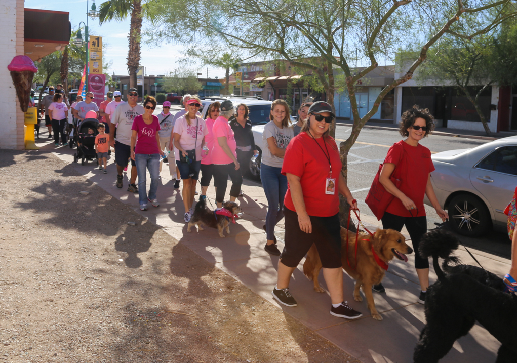 Denise's Day Strides For Hope Raises $8,000 Saturday