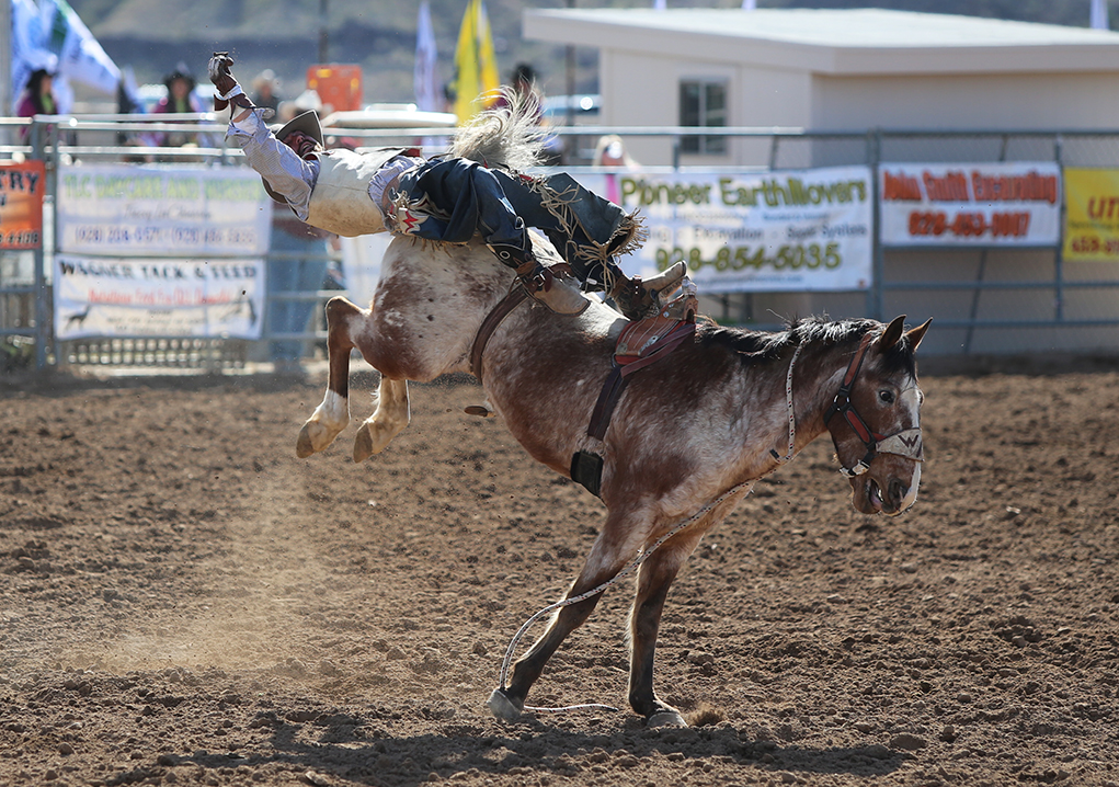 Lake Havasu Delbert Days Rodeo