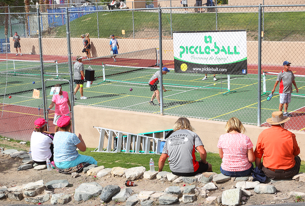 In a Pickle…Ball That Is