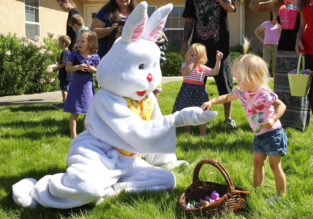 Easter Weekend Egg Hunts