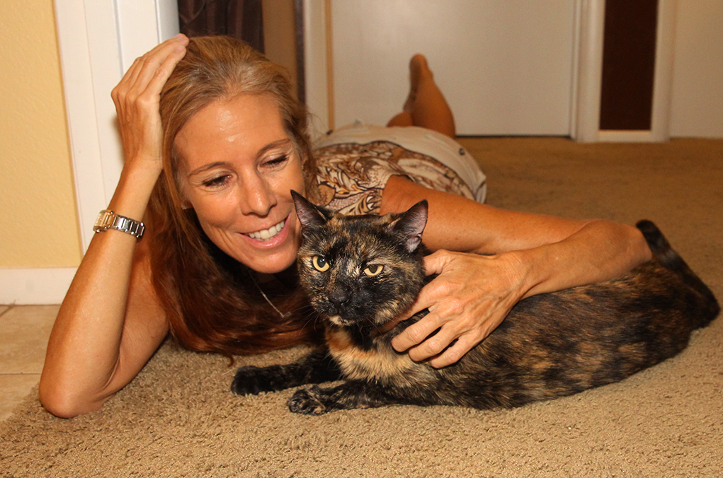 Rescued Cat from  Sunken Boat Gets Forever Home