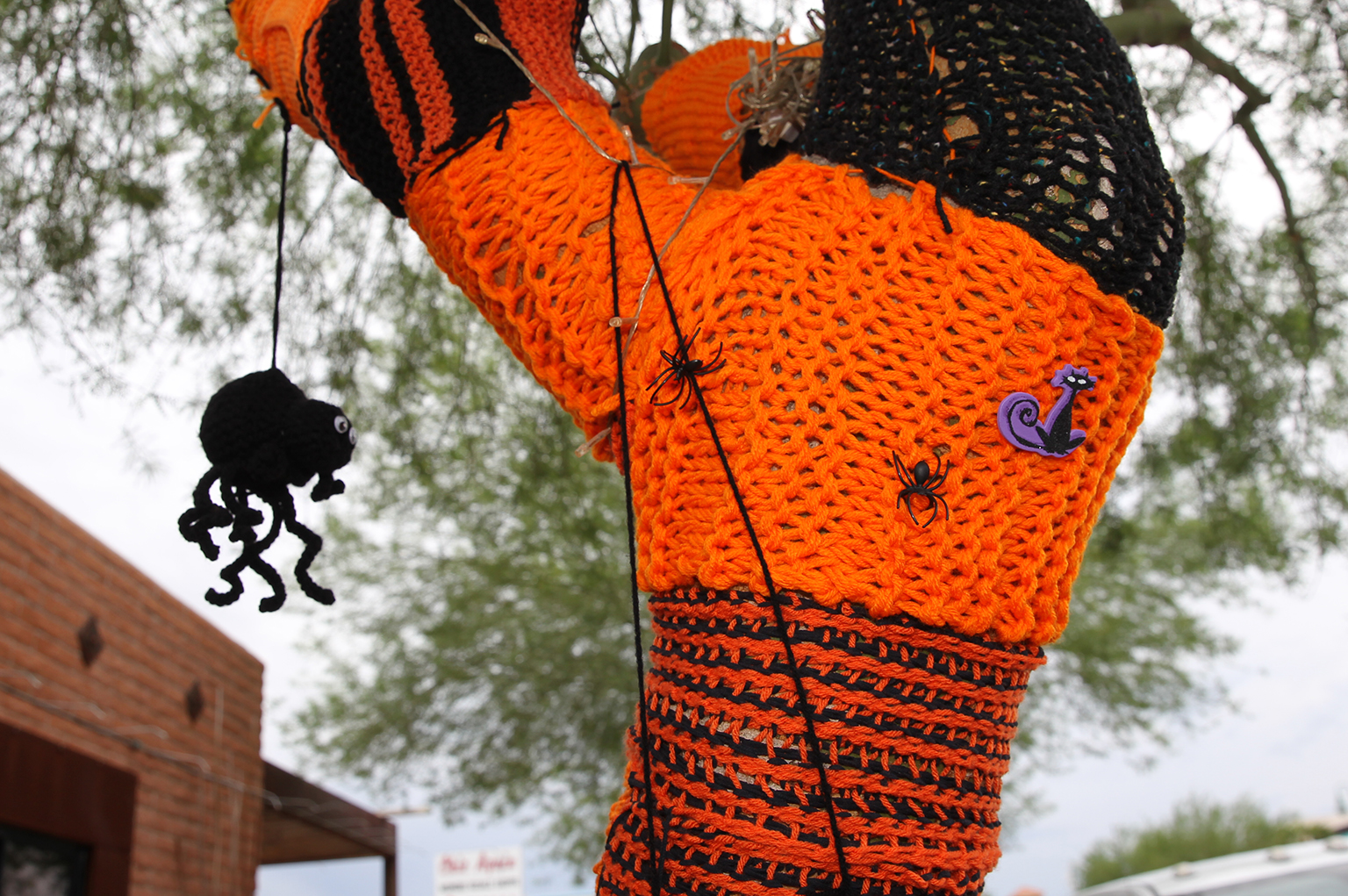 Knotty Knitters Decorate Trees On McCulloch