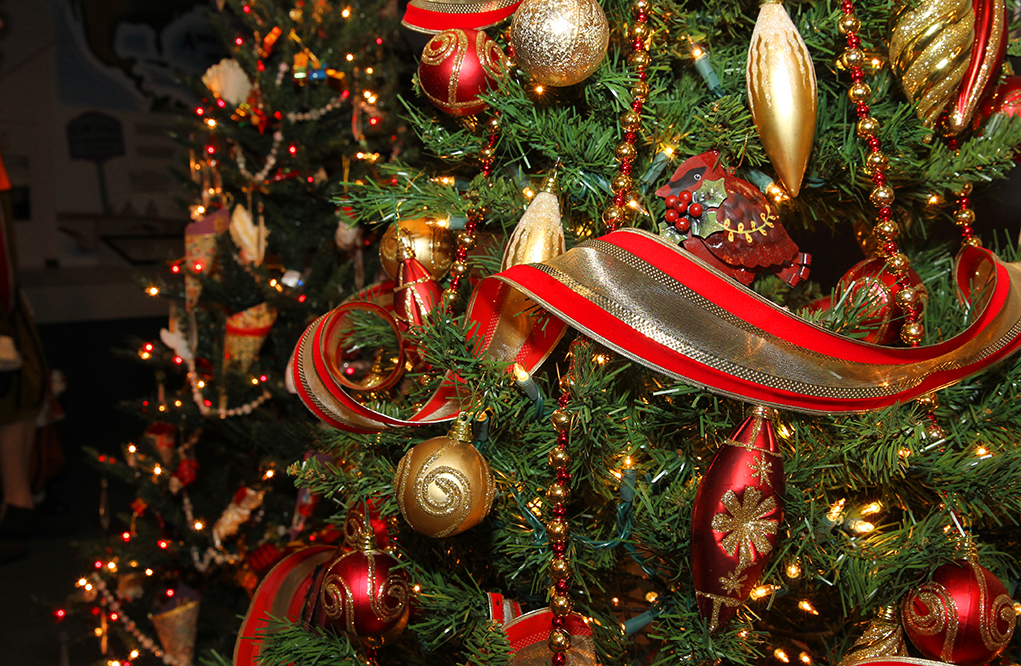Christmas Tree Festival And Party Among the Trees Set