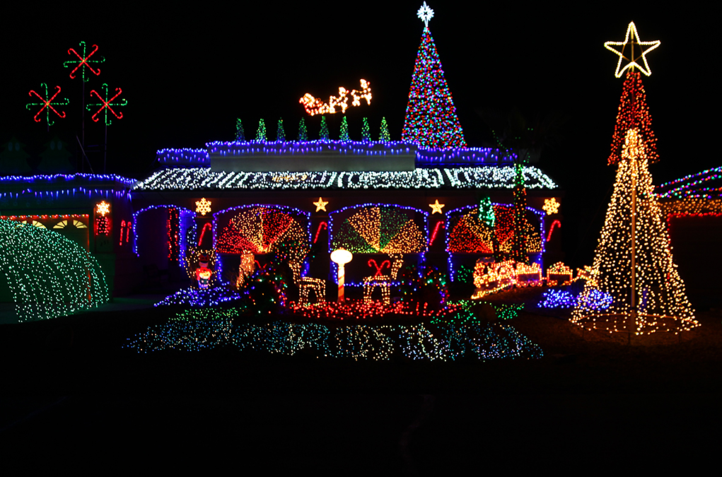 Christmas Tree Lane.Riverscene Magazine Christmas Tree Lane Lights In Lake