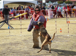 The Sherrif's Department does a demonstration of their K-9 unit. Jillian Danielson/RiverScene