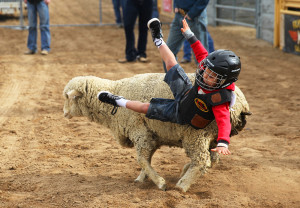 A youngin' falls off of a sheep during the Mutton Bustin Saturday morning. Jillian Danielson/RiverScene