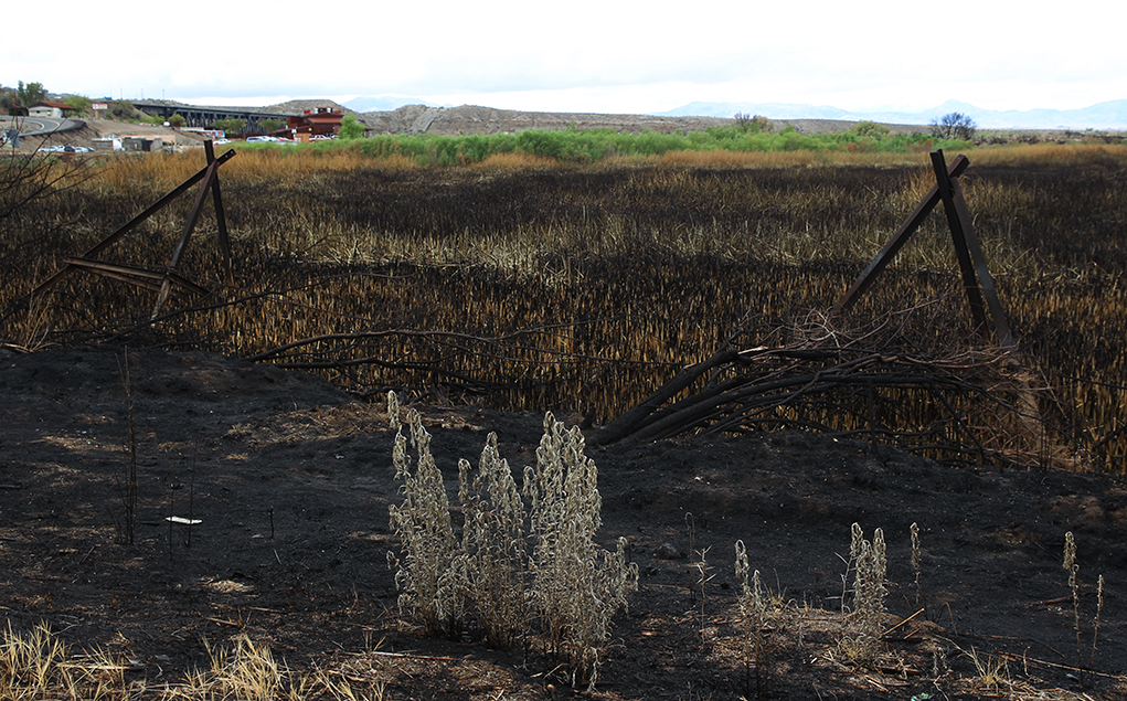 Topock Fire In Cleanup Phase
