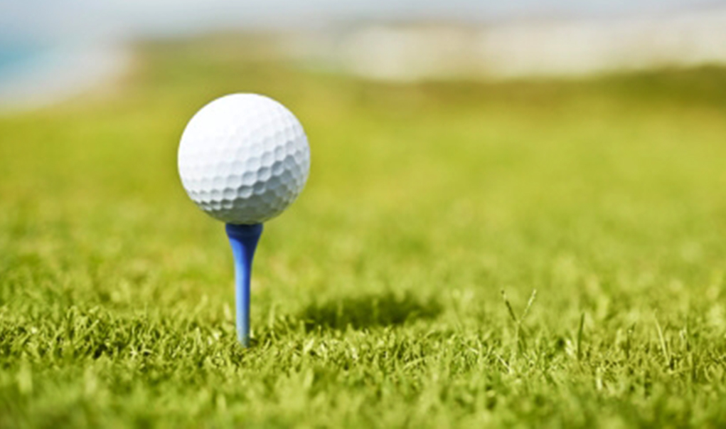 Golf Tourney To Benefit LHHS Teams