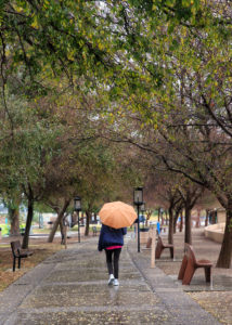 Gayle Cooper walks through Rotary Park with her umbrella Thursday morning. Jillian Danielson/RiverScene