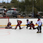 The Lake Havasu Hockey League hosted 25 teams, from throughout the state, at our annual roller hockey tournament.
