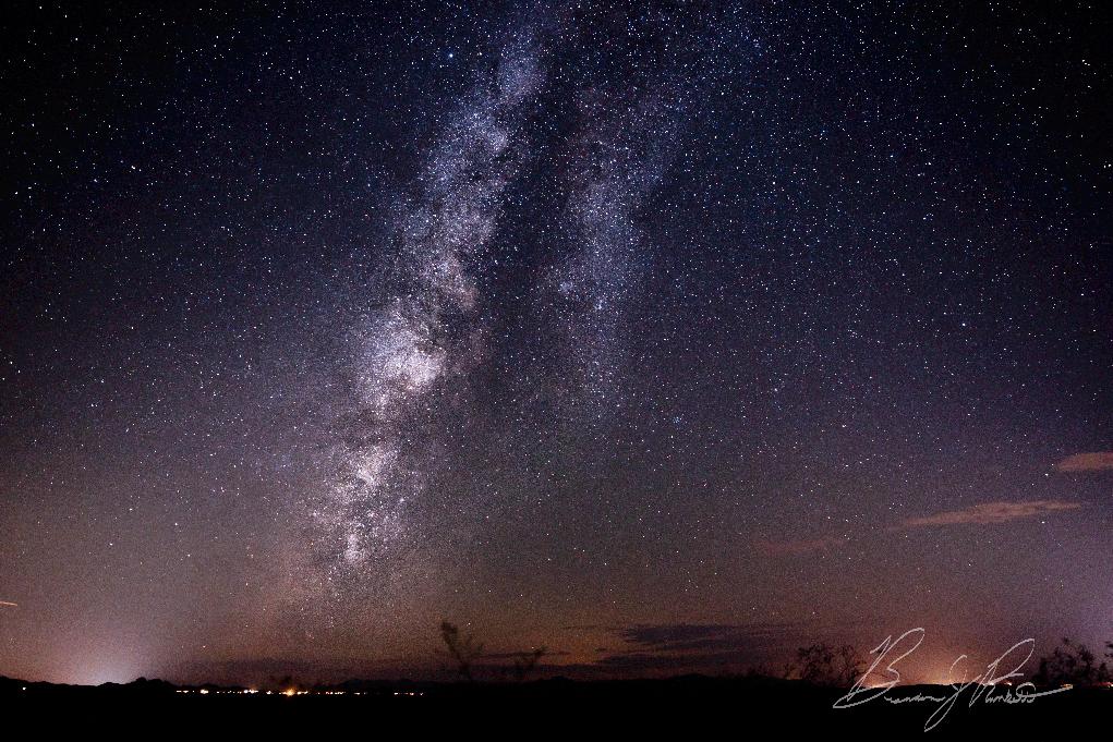 Stars Capture Photographers' Attention