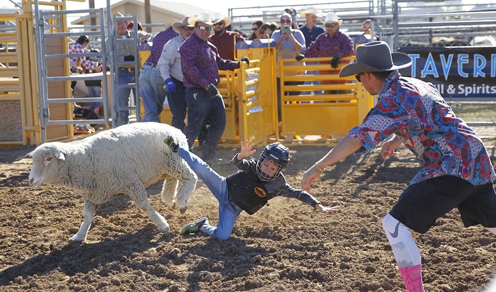 Volunteers Ensure Good Cowboy Fun