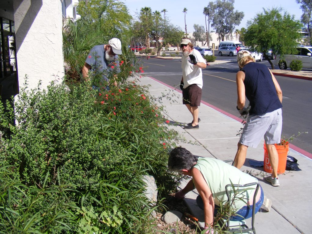 The Mohave County Master Gardeners Are Here To Help Your Garden Grow