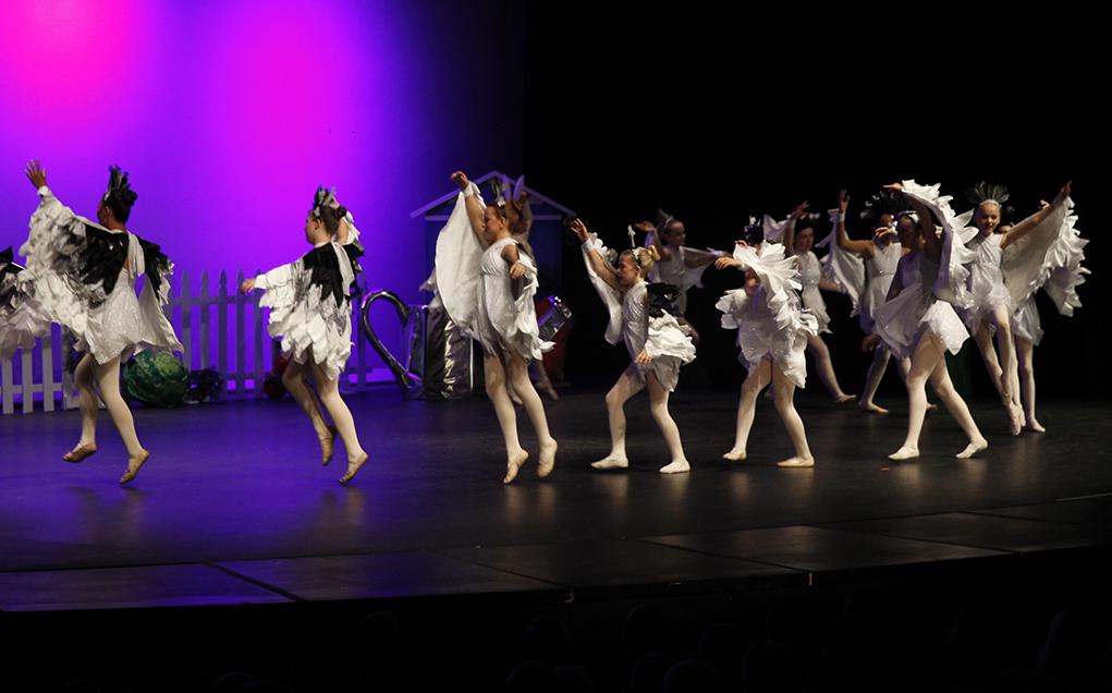 ballet lake havasu