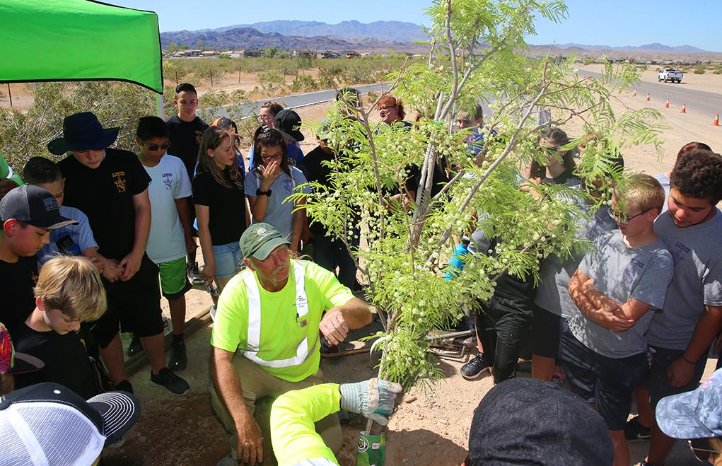 Lake Havasu Students Celebrate Age-Old Tree-Planting Celebration