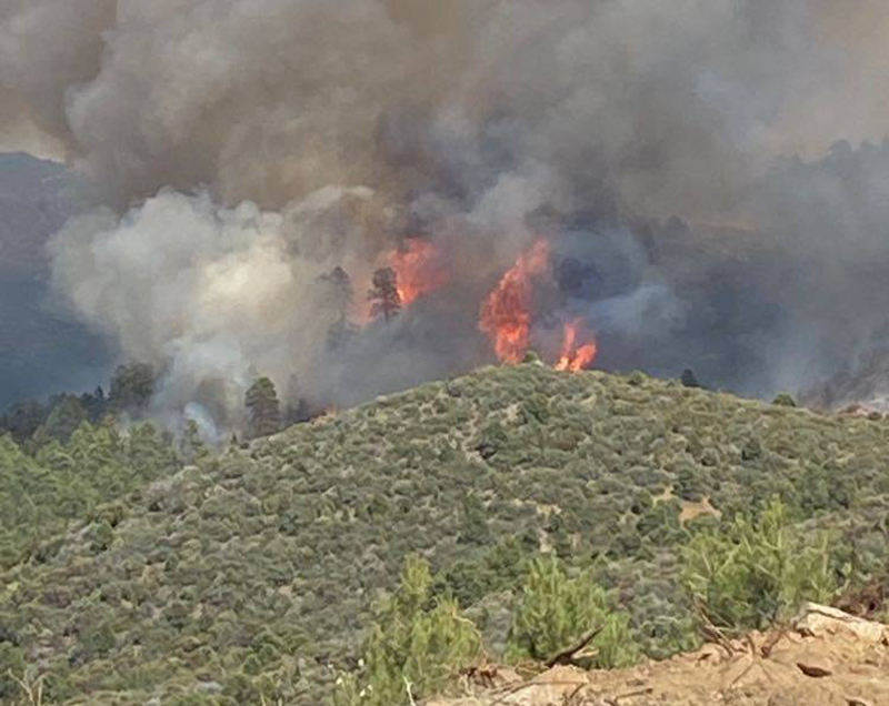 Desert Hills Fire District Shares Some Insight To Wild Land Fire Fighting