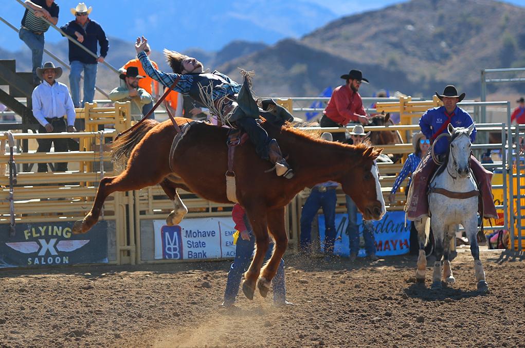 Rip Roarin' Rodeo Fun