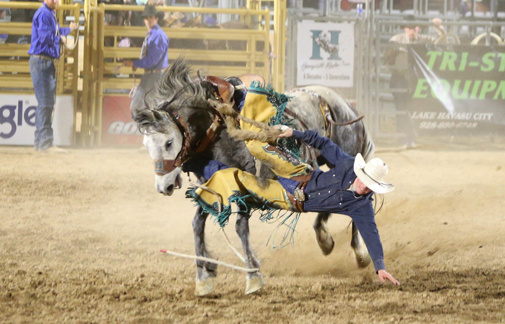 Havasu Stampede Rodeo RiverScene Magazine